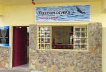 Freedom Divers Safaga / Das Team der Freedom Divers Safaga stellt sich vor ...