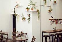 Plantas em casa / by Danni Ribeiro