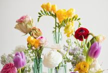 flowers for any tabletop / by Dixon Gallery & Gardens