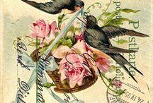 Vintage Happy Birthday cards / Hartelijk Gefeliciteerd, verjaardags kaarten.
