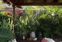 Hawaiia Roof terrace