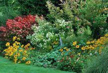 Concevoir son jardin