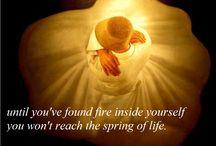 Rumi. My Beautiful Rumi