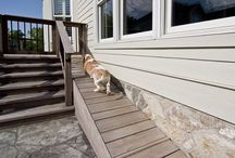 Pet Remodeling / by Mosby Building Arts