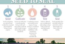 Misc Young Living Essential Oils Graphics