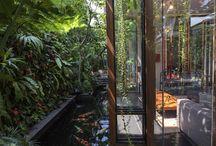Arkitektur o trädgård