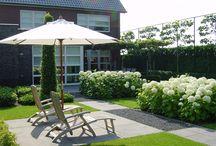 Tuinaanleg / Een mooi aangelegde tuin voegt waarde toe aan de uitstraling van uw woning of bedrijfspand. Hij draagt bij aan uw woon- of werkgenot, in alle seizoenen van het jaar.  Een goed tuinontwerp is de basis voor de aanleg van een tuin.  Als we bij u langskomen voor een tuinontwerp, brengen we uw wensen in kaart en bespreken we de mogelijkheden in beplanting, (kunst-)gras, beregening, bestrating, eventuele bouwwerken en vijver- en waterpartijen.