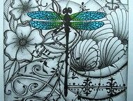 Dragonflies / by Pam King