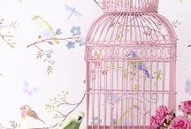 Birdcages / by Florabella Actions (Shana Rae)