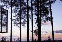 Boomhutten / hutten / Verschillende boomhutten, hutten, gemaakt van takken, hout of andere materialen. Buiten spelen!