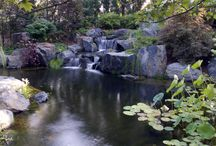 Natural Pools / Custom Swim Ponds by Kane Brothers. Chemical-free Pools, adding natural clarity and beauty into your backyard
