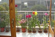 Delhi NCR Serviced Apartments  / Looking for a luxurious serviced apartment in Delhi ncr? Call us at: (+44) 203-051-6815 to book holiday apartments in Delhi ncr at low rates.