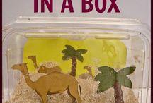 Creative Animal inquiry ideas