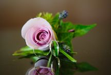 Buttonholes / Traditional and modern buttonholes