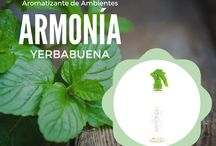 Aromaterapia / 0