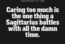 Sagittarius / The Sagittarius sign