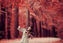 Mood board (violins)