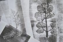 Sarah Hardman / monoprints