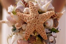 Sea Shells for Sea Shore Weddings / by Lisa Hutchinson