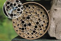 Birds, Bees, Wildlife / Quality birdhouses and feeders that last for many years. Window feeders let you see your birds up close, hummingbird feeders, too. Bat houses and Mason Bee Nesting Kits.