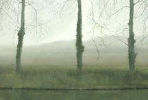 Landscape Painting / Landscape that amazes me, landscape painting in all its forms