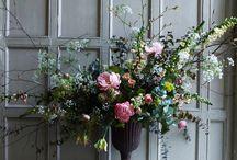 flowers plants / Flower arrangments, flowers, flora