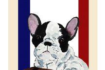 Frenchie Dog