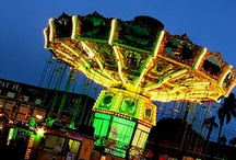 For The Love Of Carousels / I love the magic, colour, beauty of carousels