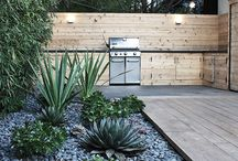 Succulent courtyard / Collecting visual concept and ideas for a clients back courtyard to meet their specification and brief.