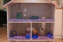 hamsters/muizen
