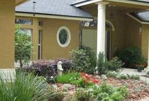 Tampa Landscape Design Cottage Color Gardens