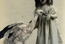 Vintage animal pictures