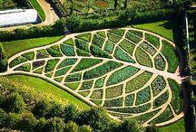 Garden dizayn