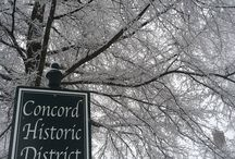 Day Tripping / Got a couple hours or a whole day to spend in Downtown Concord?  Here are some things to do!