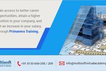 primvera online training