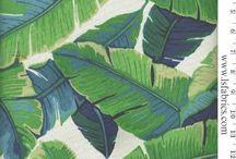 Pto tropical mood
