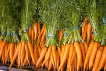 All about Carrot & Carrots Recipes / Doe Run Farms, Tennessee and Alabama's CSA choice for farm fresh local produce. Register today at http://doerunfarms.com/store/