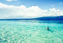 Moluccas Island