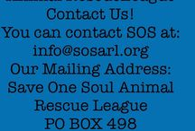 About Save One Soul Animal Rescue League / All about us