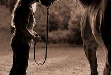 Häst minnesbilder