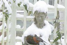 A Winter's Garden / by Kathy Stevens