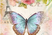 Butterfly Vintage