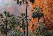 Kimberley walking tour at a glance: walking, camping and 4wd: 13 days experiencing the