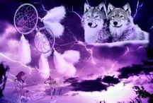 My obsession for Dream Catchers wolfs