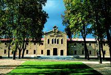 NUESTRAS BODEGAS / Toda la belleza arquitectónica de nuestras bodegas que transmiten la historia y el saber hacer del mundo vitivinícola. Alguna considerada Monumento Histórico Artístico.