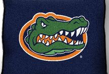 Florida Gators baby! / by Christine Patten