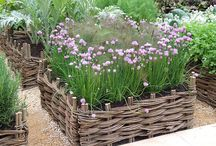 pottagers and other garden ideas