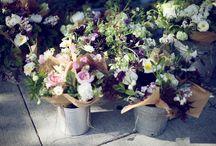 Flowers / De toutes les couleurs pour apporter un peu de douceur et de poésie dans ce monde ...