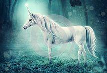 Unicorn RF