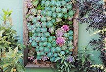 garden art / by Angela Kemp